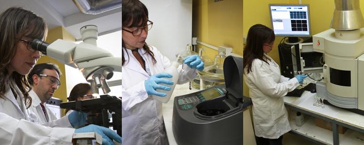 laboratorio01
